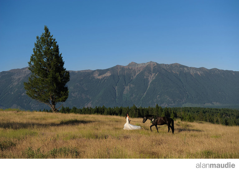 Equine-Wedding-Photographer
