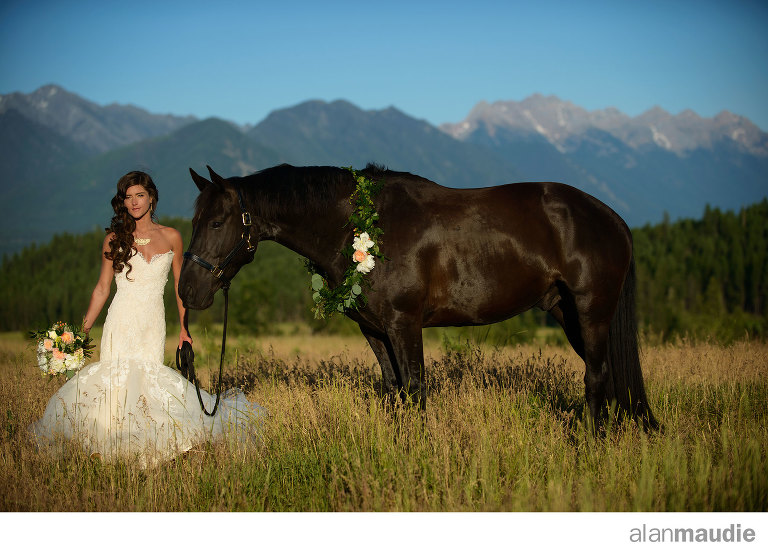 Horse-Wedding-Photographe